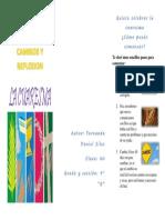 Brochure de Cuaresma