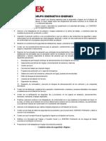 Programa de Grupo Energetico (1)