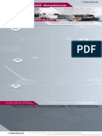 Audit-roadmap