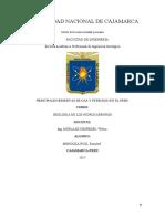 Principales Reserva de Gas y Petroleo en El Peru (Mendoza Ruiz Esquibel)