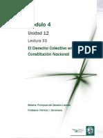 Lectura 33  - El Derecho Colectivo en la Constitución Nacional .pdf