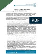 Contenidos Curso Ingreso a la Carrera Docente.pdf