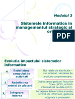 Sisteme informatice strategice