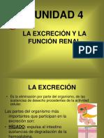 la_excrecion_y_la_funcion_renal.ppt