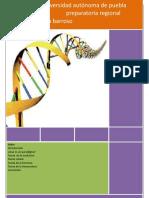 Los Cuatro Paradigmas de La Biología
