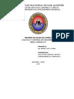 Informe Final Neyver