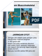 80. Sistem Otot