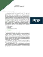 03 Estructura de Los Costados
