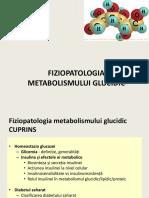 Fiziopatologia Metabolismului Glucidic (I)