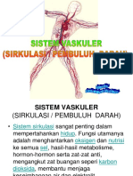 Anatomi Pembuluh Darah