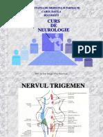 Nervii Cranieni 2