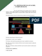 BIOMECANICA - SISTEMAS DE PALANCAS DEL CUERPO HUMANO.pdf