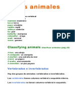 Unit 3 Animals