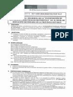 Directiva 023 Ugel Pasco