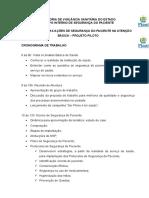 Cronograma-segurança Do Paciente Na Atenção Básica (5)