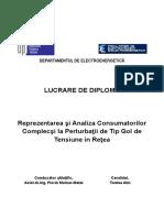 Reprezentarea şi Analiza Consumatorilor Complecşi la Perturbaţii de Tip Gol de Tensiune in Reţea.doc