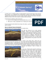 What is Seismic Survey.pdf