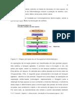 4_PDFsam_2013 Capítulo 2 Introducao - 5 a 17 rev 2013