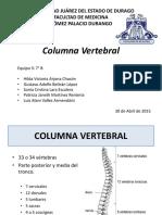 Columna Expo