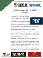 Desorden Ambiental en El Modo Auditivo Juan Pablo