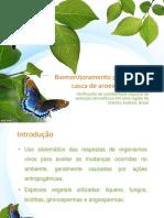 Biomonitoramento aroeira.pptx
