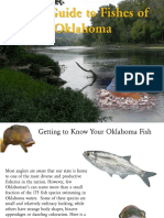 Field Guide to Fishes of Oklahoma