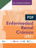 manual_ERC.pdf
