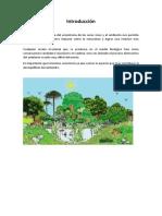 Recoleccion de La Esctructura Del Ecosistema