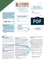 Organizaciones e Instituciones Científicas e Tecnológicas