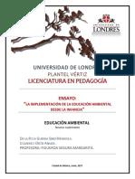 EnsayoAnaide-Marisela.pdf