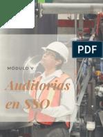 Modulo v.oficial Auditorias