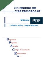 Manejo Seguro de Sustancias Químicas Peligrosas- Colmena