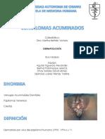Condilomas Acuminados. Dermatología