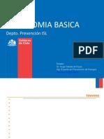 Ergonomia Básica
