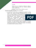 informe zavala 4.docx