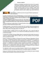 MUISCAS O CHIBCHAS.docx