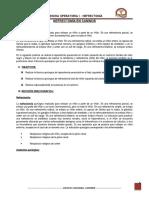 242854898-NEFRECTOMIA-EN-CANINOS-doc.doc