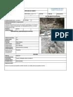 Fichas Geologicas