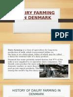 Dairy Farming in Denmark