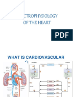 6. Electrophysiology of Heart