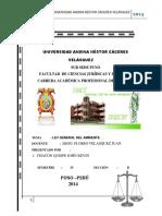 UNIVERSIDAD ANDINA NÉSTOR CÁCERES VELÁSQUEZ  JEFE.docx