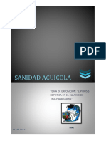 Lipidosis Sanidad Acuícola