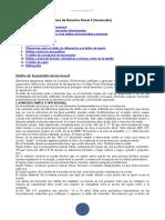 Guia Derecho Penal II Venezuela