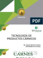 Tecnología de Productos Cárnicos.pdf