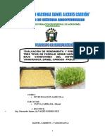 59833224-Proyecto-Final-de-Forraje-Verde-Hidroponico-UNDAC.pdf