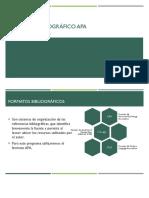 Formato Bibliográfico APA - Resumen