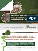 Proyecto Alimentación de Bovinos Con Subproductos de La Agroindustria de La Palma de Aceite