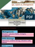 10- Mutagens and Mutagenesis.ppt