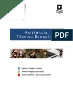 Asistencia Tecnica E IIDE 2011