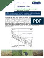 planteo_FODAconformato.pdf